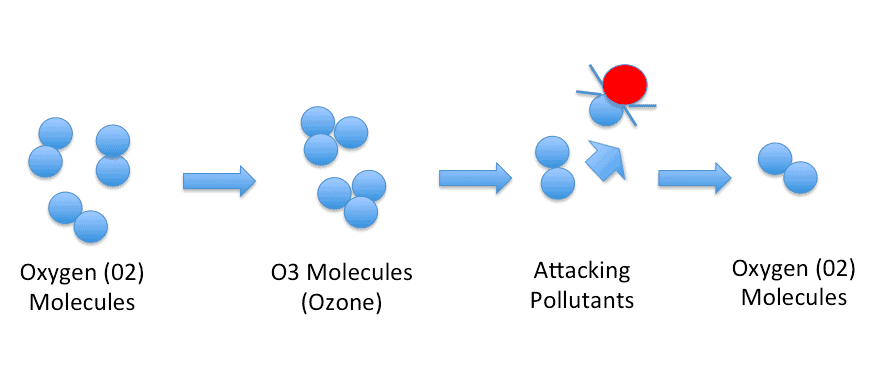 How ozone works