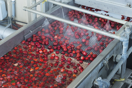 Ozone Food Disinfection