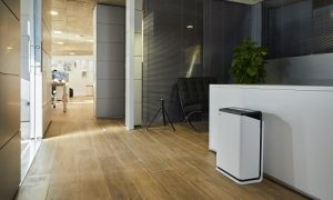 Where to Place Your Air Purifier?